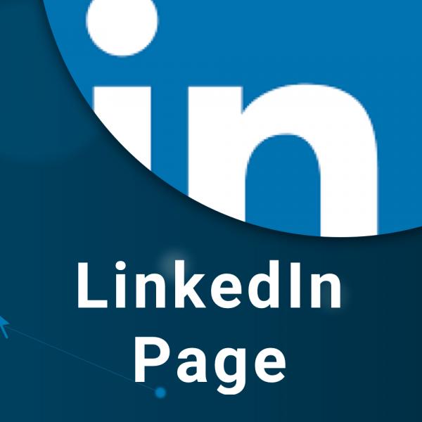 LinkedIn Page Image