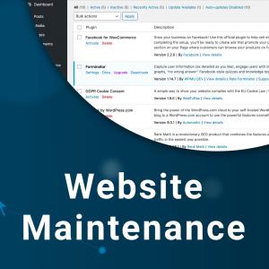 Website Maintenance Image