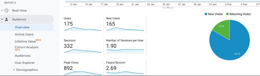 Google Analytics audience overview of marketing metrics